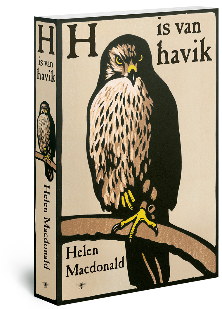 De h is van havik